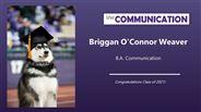 Briggan Weaver - Briggan O'Connor Weaver
